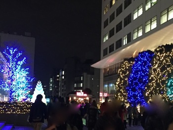 2015Dec22-ChristmasLightUp2 - 1.jpg