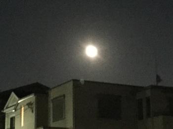 2015Sep30-Moon1 - 1.jpg