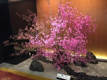2016Apr22-Flower1 - 1.jpg