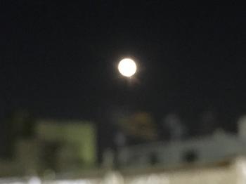 2016Jan25-Moon - 1.jpg